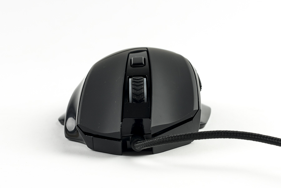 acgam g402 mouse